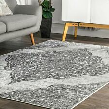 nuLoom Transitional Floral Jeannette Area Rug in Gray