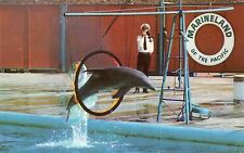 DOLPHIN THRU HOOP,MARINELAND OF THE PACIFIC-PORTUGUESE BEND,CA