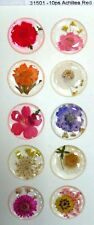 Achillea Red Real Pressed Flower Craft Dome Stickers
