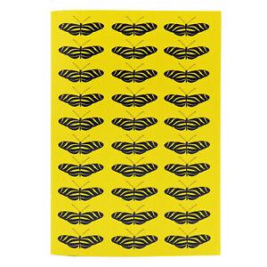 Robert William A5 Tropical Butterflies Zebra Notebook