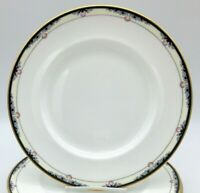 Two Royal Doulton Rhodes Dinner Plates Beautiful Pattern Very nice condition