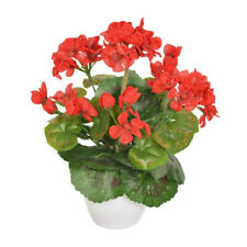 Artificial Mini Geranium in White Pot 27cm/10.5 Inches Tall Red