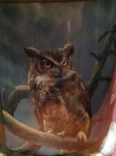 OWL BLANKET 50 X 60 NEW - Royal Plush Raschel