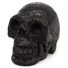 "3"" Natural Loose Volcanic Lava Crystal Healing Carved Stone Human Skull"