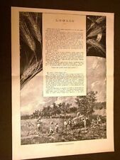 Luglio 1886 Illustrazioni di Sezanne e versi di Abdon Altobelli