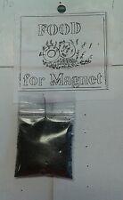 POLVO DE METAL Food Magnet religion yoruba ifa santeria palo