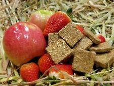 Apple Strawberry & Oaten Hay Cookie Treats for Pet Bunny Rabbit