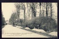 Carte Postale 14 - St GERMAIN du CRIOULT Arbre Route de Vire Le HÊTRE PARAPLUIE