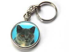 BRITISH SHORTHAIR BLUE CREAM Cat Quality Chrome Keyring Picture Both Sides