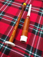 écossais cornemuse en bois Pratice with 2 anches - Palissandre