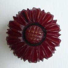 Bouton ancien -  Galalithe - Fleur - H. Hamm ? - 24 mm - Vintage Button