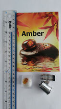 Fossil Amber Collection Starter Kit. Book, Specimen 60x Loupe with LED & UV
