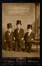 THE MURRAY MIDGET TRIPLETS - P.T. Barnum Shows Vintage Photograph Cabinet Card
