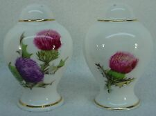 QUEEN ANNE china DUNDEE THISTLE pattern SALT & PEPPER SHAKER Set 3-1/8""