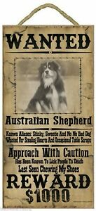 """Wanted Western Poster Style Australian Shepherd Funny Dog Pet Sign Plaque 5""""x10"""""""