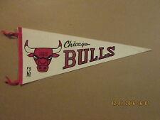 NBA Chicago Bulls Vintage Circa 1969 Logo Basketball Pennant
