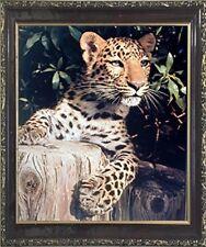 Leopard (Panther, Jaguar, Big Cat) Wild Animal Wall Decor Art Framed Picture