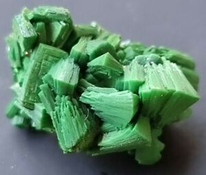 RARE Fluorescent Torbernite . Uranium ore. Very high activity. Uranium mineral