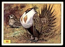 Capercaillie puzzle 2 96 No Panini Birds 1978