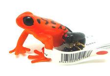 T13) Papo (50193) Äquatorial Frosch  rot  Reptilien  Tierfiguren
