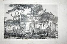 M Repubblica romana truppe esercito Villa Pamphili Panfili Raffer Zouavi Roma