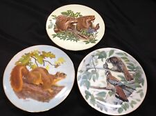 Natures Heritage Plates Squirrel American Falcon Raccoons