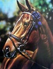 "Ron Iverson Best of Show Horse Art Print   14"" x 18.5"""