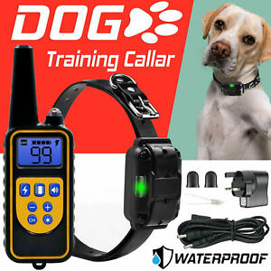 Electric Dog Training Collar Shock Vibration Anti-Bark Remote Rechargeable 800Yd