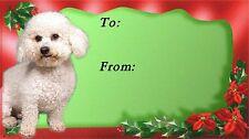 Bichon Frise Christmas Labels by Starprint - No 1