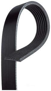 Serpentine Belt  ACDelco Professional  7K896
