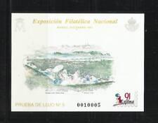 ESPAÑA. Año: 1991. Tema: PRUEBAS OFICIALES.