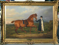Hand-painted Old Master-Art Oil painting Portrait horse on Canvas 30X40""