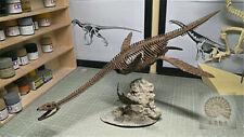 1/10 Plesiosaur Skeleton Model Plesiosaurus Dinosaur Animal Collector Decor Gift