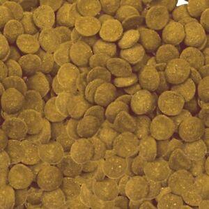 Aqueon Bottom Feeder Tablets Food for all Bottom-Feeding Fish 3oz