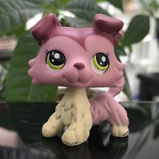 LPS Littlest Pet Shop #1723 Kids Toys Green Eyes Pink Mauve Collie Dog Puppy