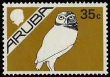 """ARUBA 6 (Mi8) - Burrowing Owl """"Athene cunicularia"""" (pb18660)"""