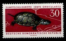 Schildkröten. Sumpfschildkröte. 1W. DDR 1963