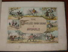 1840 Child's Own Book of Animals 12 Colour Lithographs Darton Lion Elephant Cat