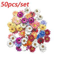50Stk  Bunte Holz Knöpfe 2-löcher Bastelknöpfe Knopfmischung 25mm Blumenform