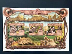 Guinea 2013 /   Animals - Domestic Cats / 4v minisheet MNH