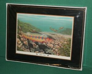 Pimpernel English Life Sport Fish Cork Placemats Set of 4 brand new SEALED 16X12