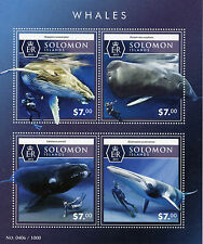 Solomon Islands 2015 MNH Whales 4v M/S Marine Animals Humpback Whale Stamps