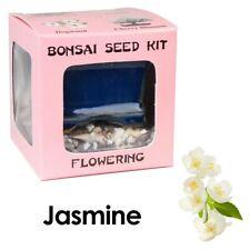 Eve's Jasmine Bonsai Seed Kit to Grow Jasmine from Seed