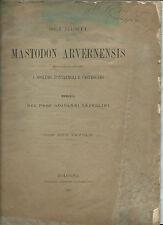 Libro Resti Mastodon Arvernensis Mastodonte Spoleto Pontremoli G. Capellini 1888