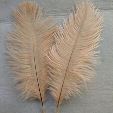 "5 pcs SOFT SALMON Ostrich Feathers Millinery and Crafts  4"" x 6"""