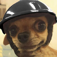 Pets Dog Safety ABS Helmet Riding Cap Cosplay Bike Motorcycle Hat for Small Dog