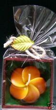 Boxed Floral Scented Candle - Orange Plumeria