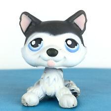 Authentic Littlest Petshop 210 Husky Dog / Chien Original Hasbro LPS Pet Shop