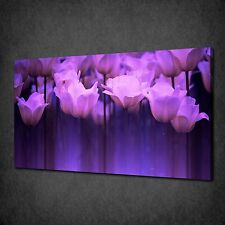 STUNNING PURPLE TULIPS FLOWERS CANVAS WALL ART PRINT PICTURE READY TO HANG