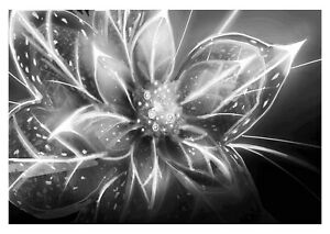 Abstract Flower - Black And White Floral Wall Art Large Poster & Canvas Pictures